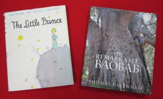 The Little Prince and The Remarkable Baobab